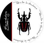 Raicilla Escarabajos